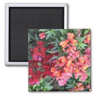 flower garden square magnet