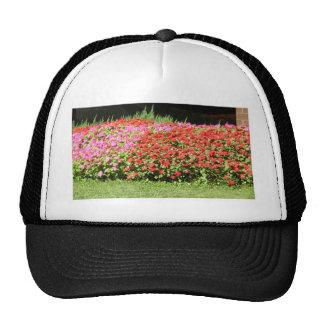 Flower Garden of Pink Red Flowers Next to Grass Mesh Hat