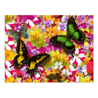 Flower Garden Postcard