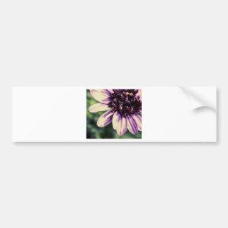 Flower Grunge Bumper Sticker