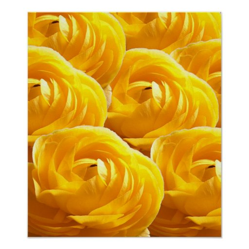 Flower-Impressions I Poster