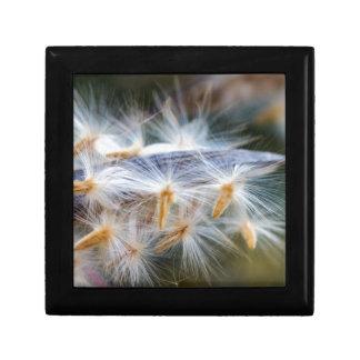 flower in autumn gift box
