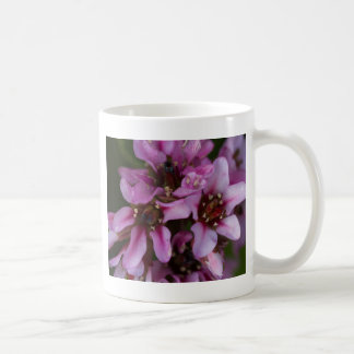 flower in bloom coffee mugs