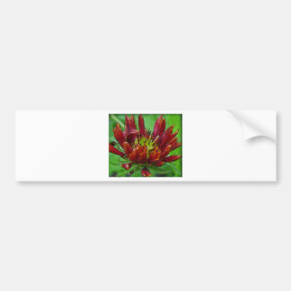 Flower in bloom red on green bumper stickers