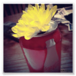 Flower in Can