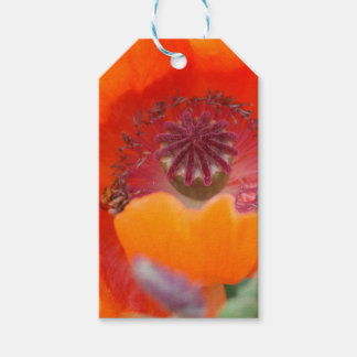 Flower in Red Gift Tags