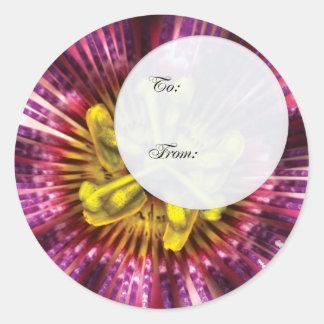 Flower - Intense Passion  Stickers