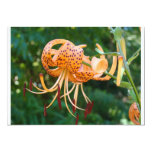 Flower Invitation Cards Lily Flowers Invitations 13 Cm X 18 Cm Invitation Card