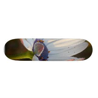 Flower Is Balboa Park Right After Sunrise Skate Board Deck