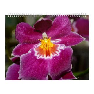 Flower Love Calendar No. 5