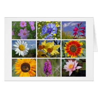 Flower-lover's card
