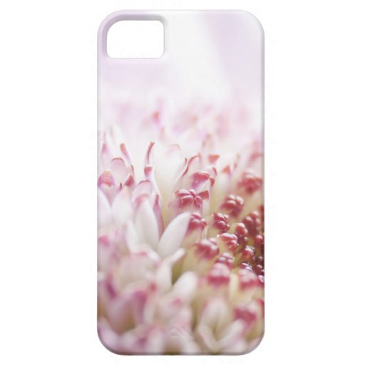 Flower Macro iPhone 5 Case