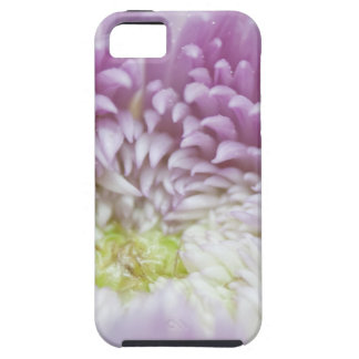Flower Macro Case For The iPhone 5