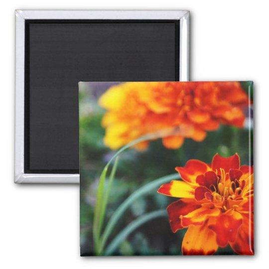 Flower Magnant Magnet
