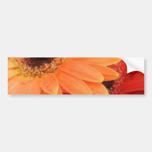 Flower mf 235 bumper sticker