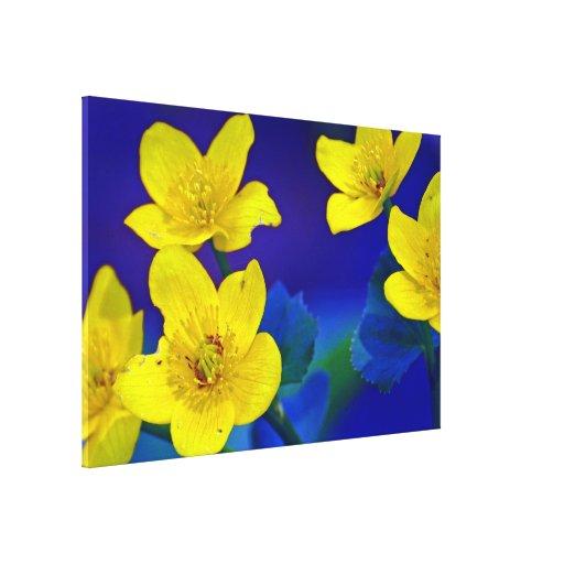 Flower mf 518 canvas print