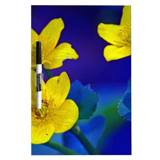 Flower mf 518 dry erase whiteboards