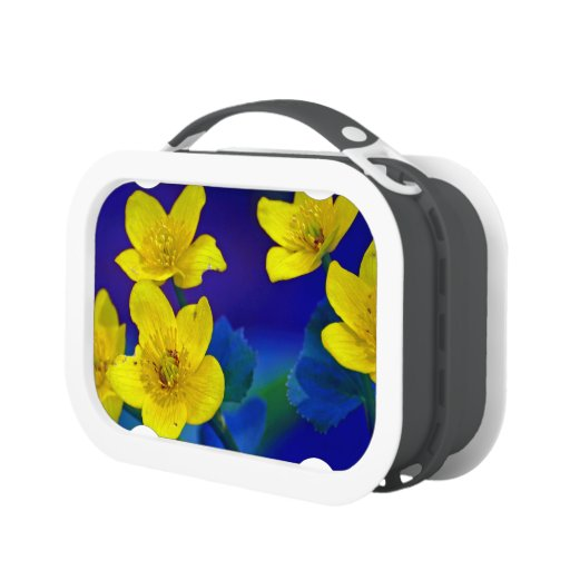 Flower mf 518 yubo lunch boxes