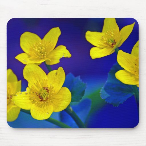 Flower mf 518 mousepads