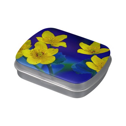 Flower mf 518 jelly belly tins
