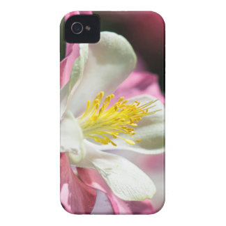 Flower mf 60 iPhone 4 covers