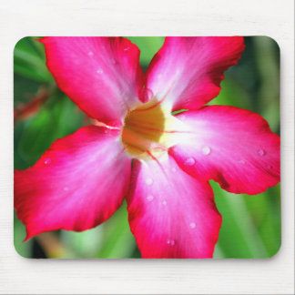 Flower Mouse Pad