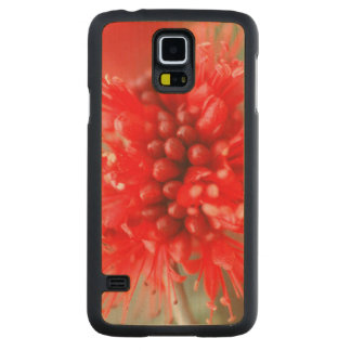Flower Of Dwarf Boerbean, Sabi Sands Carved Maple Galaxy S5 Case