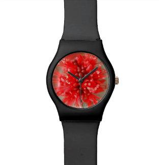 Flower Of Dwarf Boerbean, Sabi Sands Watch