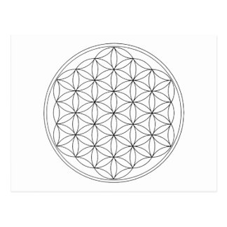 Flower of Life Black Line Postcard