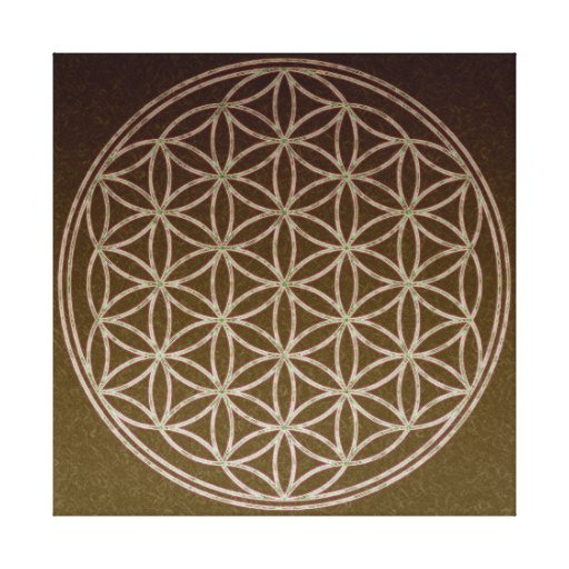 Flower of Life Gallery Wrapped Canvas