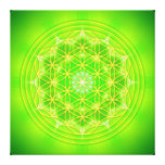 flower of life on green mandala galerie gefaltete leinwand