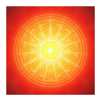 flower OF life on sun mandala Canvas Print