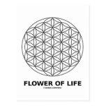 Flower Of Life (Sacred Geometry)
