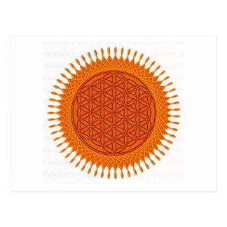 Flower Of Live / sunny design Postcard