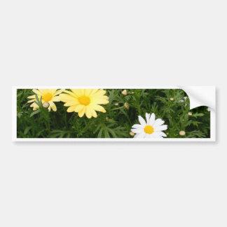 Flower of Love Bumper Sticker