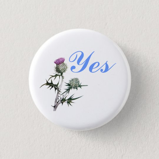 Flower of Scotland Yes Thistle Flower Pinback 3