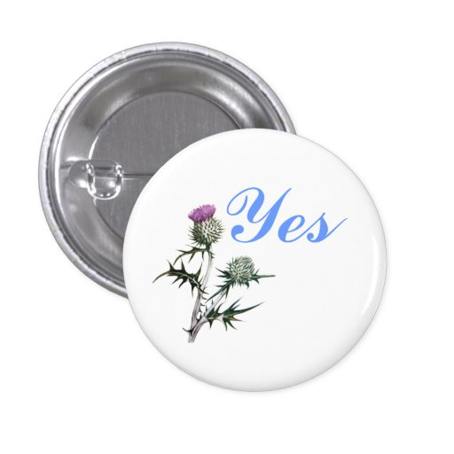 Flower of Scotland Yes Thistle Flower Pinback Pinback Button