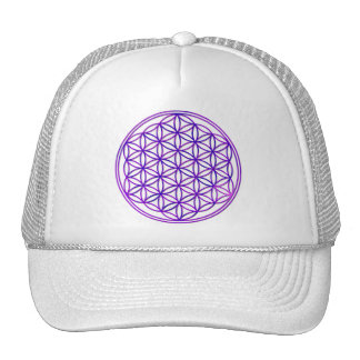 Flower of the life/Flower OF Life | pink blue Cap