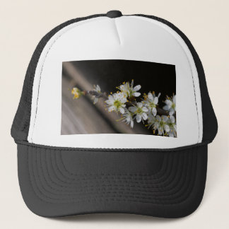 flower on tree in spring trucker hat