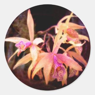 Flower - Orchid - Laelia - Midnight Passion Round Stickers