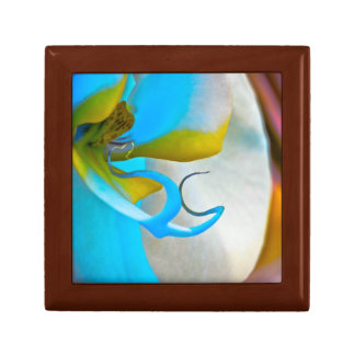 Flower Orchid Vibrant Small Square Gift Box