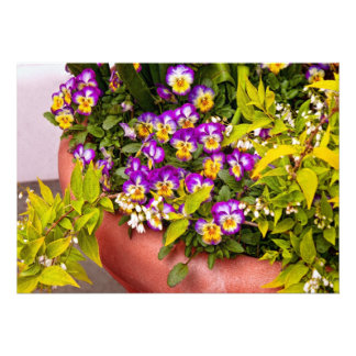 Flower - Pansy - Purple Posies .jpg Custom Invitation