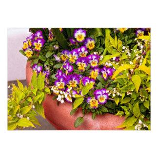 Flower - Pansy - Purple Posies jpg Custom Invitation