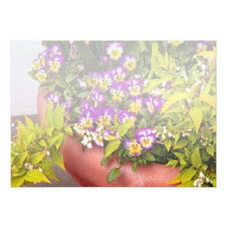 Flower - Pansy - Purple Posies .jpg Custom Announcement
