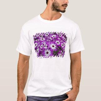 Flower pattern, Kuekenhof Gardens, Lisse, T-Shirt