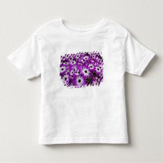 Flower pattern, Kuekenhof Gardens, Lisse, T Shirt