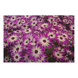 Flower pattern, Kuekenhof Gardens, Lisse, Wood Prints