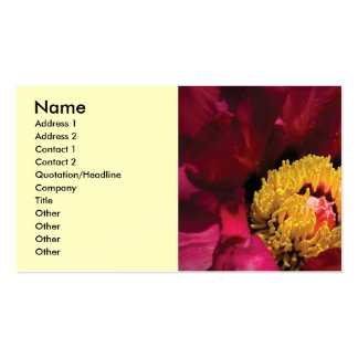 Flower - Peony Pack Of Standard Business Cards