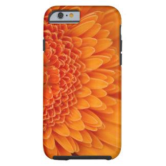 Flower Petal iPhone 6 case Tough iPhone 6 Case