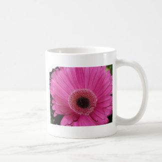flower,pink gerber daisy mugs